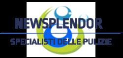 Logo Newsplendor (1)
